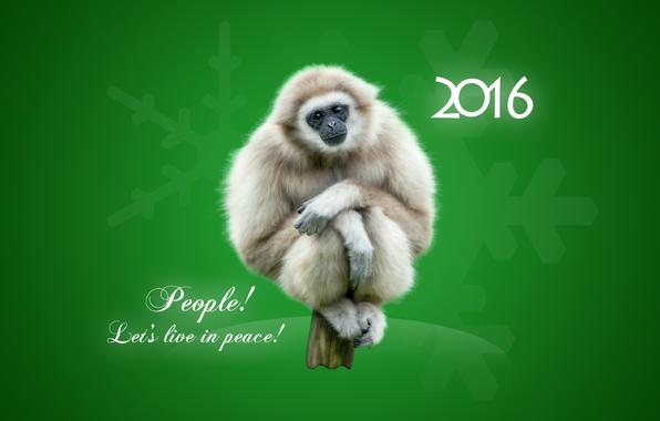 Новый год обезьяны