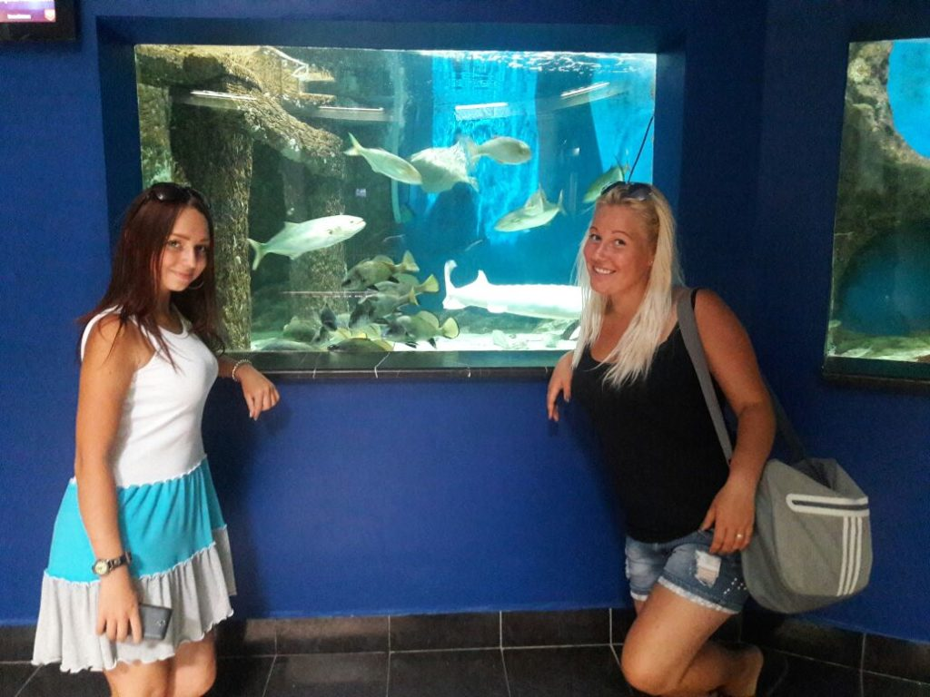 Поход в Севастопольский морской Аквариум